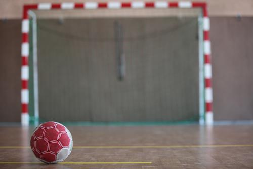 Die Handball-Bundesliga